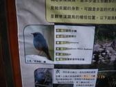 20081130南庄冷吱吱一遊!:1170413176.jpg