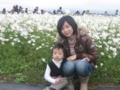 彰化花海:1392256741.jpg