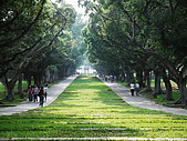 東海大學隨便拍:P1150600.jpg