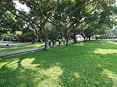 東海大學隨便拍:P1150527.jpg