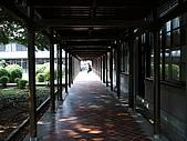 東海大學隨便拍:P1150561.jpg