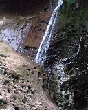 2008 南投杉林溪:IMG0754A.jpg