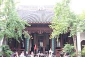 上海:16070908.JPG