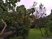 108.09.07-08空島莊園露營區:P_20190907_181419.jpg