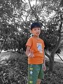 108.09.07-08空島莊園露營區:COLOR_POP.jpg