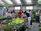 20050424北斗聚會:同遊公路花園