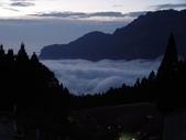阿里山櫻花季:雲海