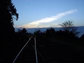 阿里山櫻花季:鐵道