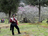 阿里山櫻花季:0018