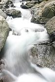 20090613-內洞國家森林遊樂區記:IMG_4892.jpg