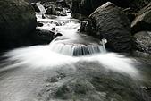 20090613-內洞國家森林遊樂區記:IMG_4849.jpg