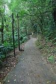 20090301-仙跡岩步道:IMG_2918.jpg