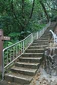 20090301-仙跡岩步道:IMG_2919.jpg