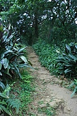 20090301-仙跡岩步道:IMG_2921.jpg