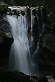 20090613-內洞國家森林遊樂區記:IMG_4800.jpg