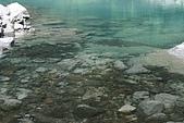 20090613-內洞國家森林遊樂區記:IMG_4953.jpg