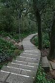 20090301-仙跡岩步道:IMG_2929.jpg