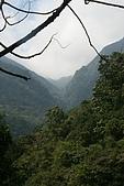 20090219-信賢步道:IMG_2586.jpg