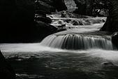 20090613-內洞國家森林遊樂區記:IMG_4820.jpg