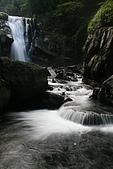 20090613-內洞國家森林遊樂區記:IMG_4822.jpg