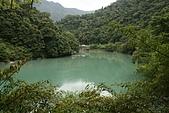 20090613-內洞國家森林遊樂區記:IMG_4973.jpg