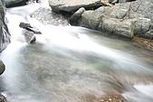 20090613-內洞國家森林遊樂區記:IMG_4886.jpg