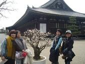 100年3月日本行-京都  大阪  神戶:0314-4