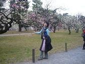 100年3月日本行-京都  大阪  神戶:0314-18