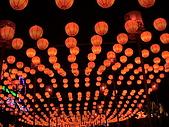 台灣燈節.福臨寶島:DSC08122.JPG