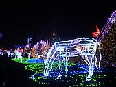 台灣燈節.福臨寶島:DSC08392.JPG