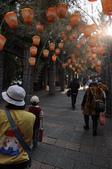 20100206-九族文化村之旅:20100206-九族文化村之旅 (5).JPG