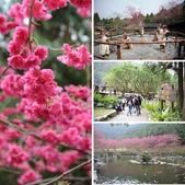 20100206-九族文化村之旅:相簿封面