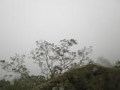登山:2014.02.09 (12).JPG