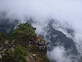 塔關山.馬崙山.合歡山西峰、北峰.東峰小奇萊:塔關山 113.jpg