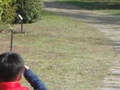 岍岍三歲三個月(3Y3M)下集:DSC05954--1010228植物園--哇!戴勝.JPG