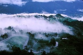 我愛的圖片:梨山之美.jpg