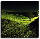 我愛的圖片:金針花山之夜.jpg