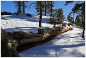 2018-12美西行:IMG_6960a 12-60 Bryce Canyon.JPG