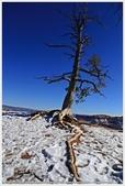 2018-12美西行:IMG_6960a 12-33 Bryce Canyon.JPG