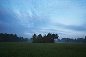 斯里蘭卡(風景篇):SLK2 (145).jpg