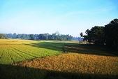 斯里蘭卡(風景篇):SLK1 (30).jpg