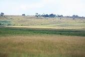 南非之旅:IMG_0739.JPG