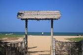 斯里蘭卡(風景篇):SLK4 (388).jpg