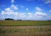 南非之旅:IMG_1278.JPG