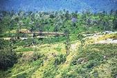 斯里蘭卡(風景篇):SLK4 (638).jpg