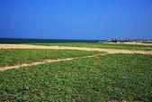 斯里蘭卡(風景篇):SLK4 (523).jpg