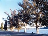 2001紐西蘭 Newzealand:pnz36.jpg