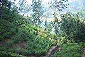 斯里蘭卡(風景篇):SLK4 (01).jpg