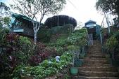 斯里蘭卡(風景篇):IMG_0085.jpg