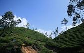 斯里蘭卡(風景篇):SLK4 (21).jpg